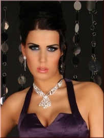 Tie Shape Rhinestone Necklace and Earrings