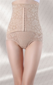 Plus Size Elegant Floral Lace Embroidery High Waist Tummy Control Panty Nude