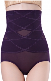 Sexy High Waist Sheer Mesh Hip Looming Underwear Purple