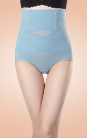 Sexy High Waist Sheer Mesh Hip Looming Underwear Blue