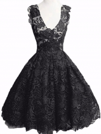 Elegant Lace Embroider V Neck Skater Dress Black