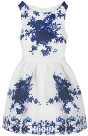 Girl's Floral Print Cute Tank Mini A Line Skater Party Dress Blue
