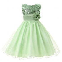 Little Girls' Sequin Mesh Flower Ball Gown Party Dress Tulle Prom Light Green