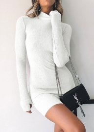 Half-high Collar Long-sleeve Gloves Midi Dress White
