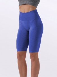 Women Yoga Sports Shorts Seamless Fitness Shorts Sporstwear