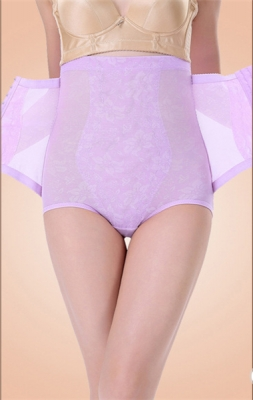 Plus Size Floral Lace High Waist Tummy Control Hip Looming Underwear Purple
