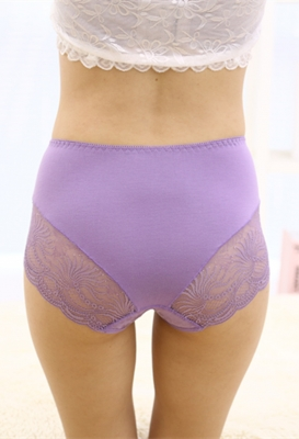Light Purple Lace Floral Seamless Panty